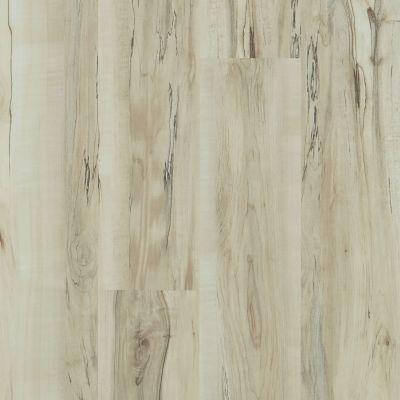 Shaw Floors Vinyl Property Solutions Brio Plus Mineral Maple 00297_VE285