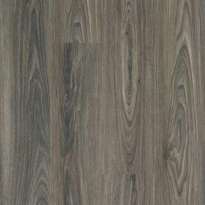Shaw Floors Vinyl Property Solutions Brio Plus Dark Elm 00915_VE285