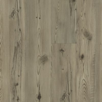 Shaw Floors Resilient Property Solutions Patriot+ Milled Prestige Pine 01036_VE308