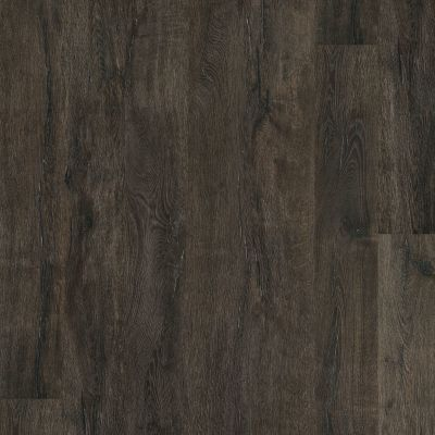 Shaw Floors Resilient Property Solutions Bari HD Plus Torino 00793_VE315