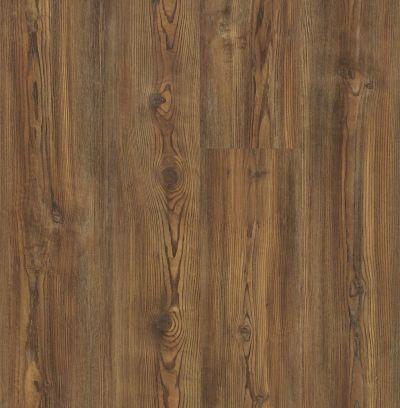Shaw Floors Resilient Property Solutions Ravenna Plus Royal Suite 07025_VE344