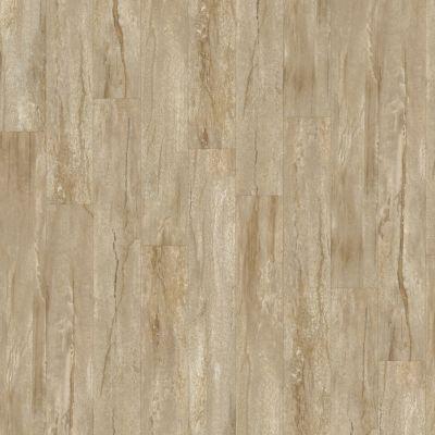 Shaw Floors Resilient Property Solutions Brava Plus Latte 00209_VE345