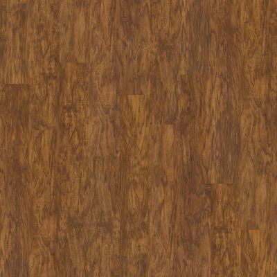 Shaw Floors Resilient Property Solutions Brava Plus Oro 00255_VE345