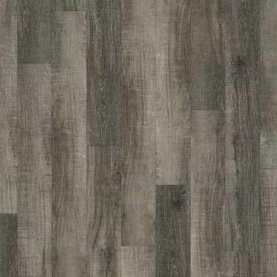 Shaw Floors Vinyl Property Solutions Brava Plus Chiatta 00533_VE345