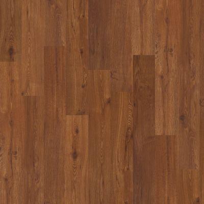 Shaw Floors Vinyl Property Solutions Brava Plus Giallo 00643_VE345