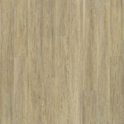 Shaw Floors Resilient Property Solutions Bargello Plus Carbonaro 00124_VE369