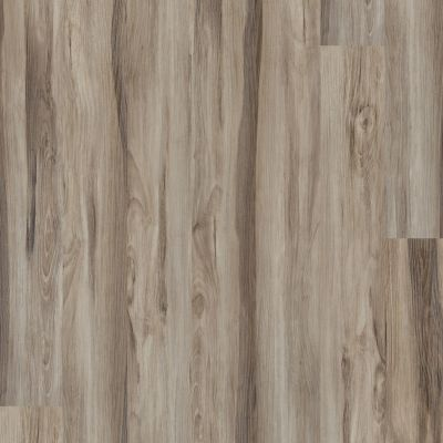 Shaw Floors Vinyl Property Solutions Bargello Plus Noce 00526_VE369