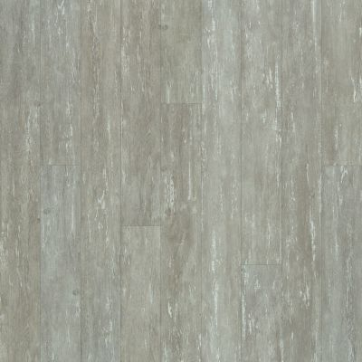 Shaw Floors Resilient Property Solutions Bargello Plus Leone 00538_VE369