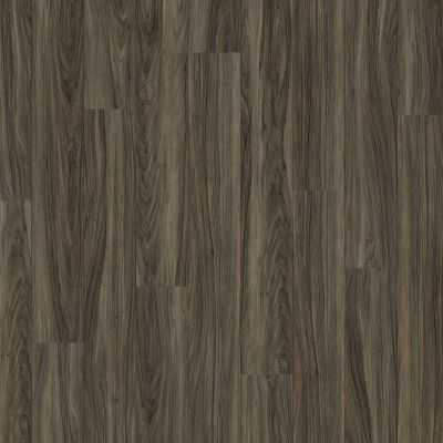 Shaw Floors Vinyl Property Solutions Como Plus Plank Costa 00150_VE370