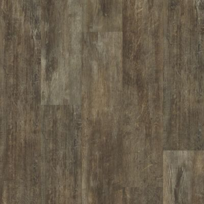 Shaw Floors Vinyl Property Solutions Como Plus Plank Genoa 00773_VE370