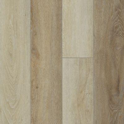 Shaw Floors Resilient Property Solutions Stature Plus Light Oak 00237_VE371