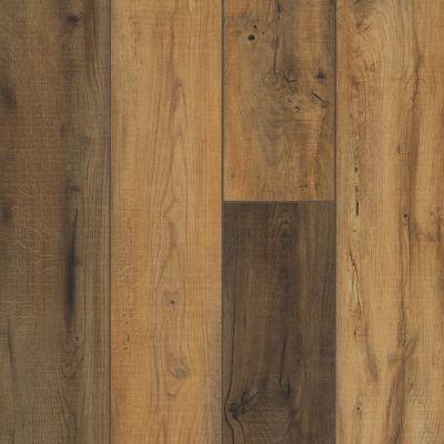 Shaw Floors Vinyl Residential Stature Plus Sunset Oak 00692_VE371