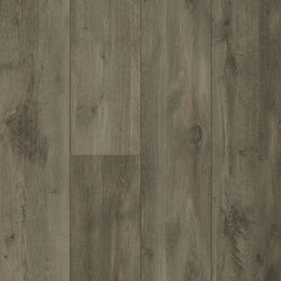Shaw Floors Resilient Property Solutions Patriot+ Accent Ambassador Oak 05057_VE380