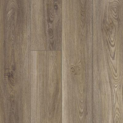 Shaw Floors Resilient Property Solutions Prominence Plus Ash Oak 07065_VE381