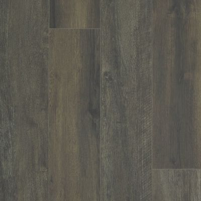 Shaw Floors Resilient Property Solutions Resolute XL HD Plus Black Coffee Oak 00916_VE387