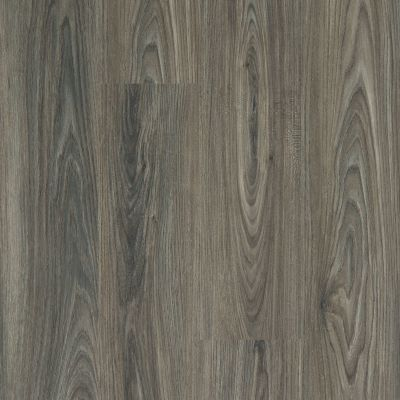 Shaw Floors Resilient Property Solutions Elan Plank Dark Elm 00915_VE388
