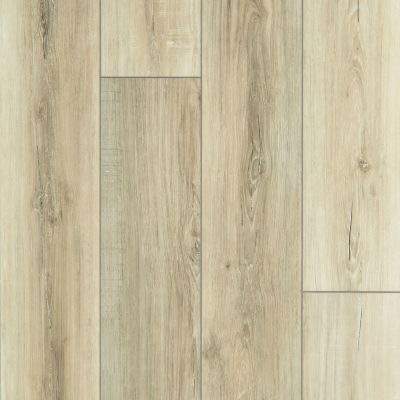 Shaw Floors Resilient Property Solutions Bonafide Hd+accent Driftwood 01053_VE427