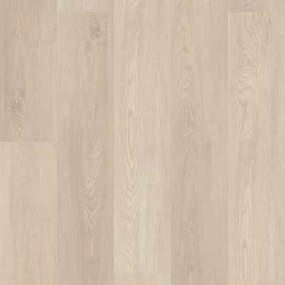 Shaw Floors Resilient Property Solutions Polaris Plus Silver Dollar 01055_VE433