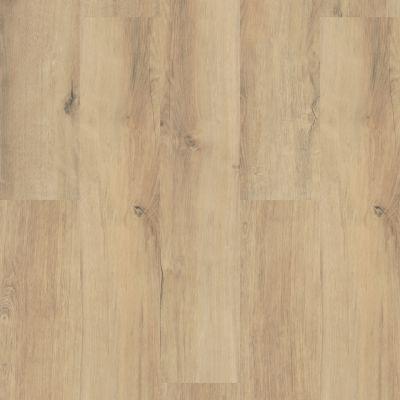 Shaw Floors Resilient Property Solutions Polaris Plus Marina 02014_VE433