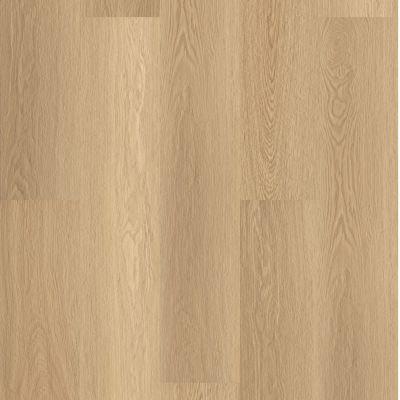 Shaw Floors Resilient Property Solutions Polaris Plus Castaway 07087_VE433