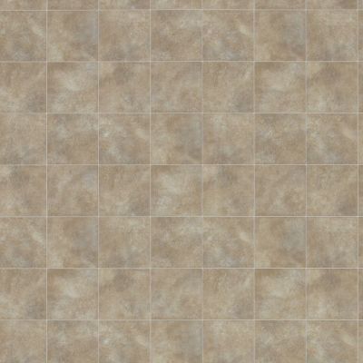 Shaw Floors Resilient Property Solutions Pro 12 Classics Tan 00150_VG054