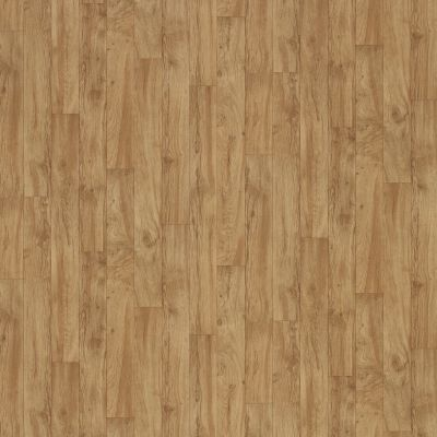 Shaw Floors Resilient Property Solutions Pro 12 Classics Open Prairie 00252_VG054