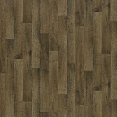 Shaw Floors Resilient Property Solutions Pro 12 Classics Harbor Brown 00751_VG054