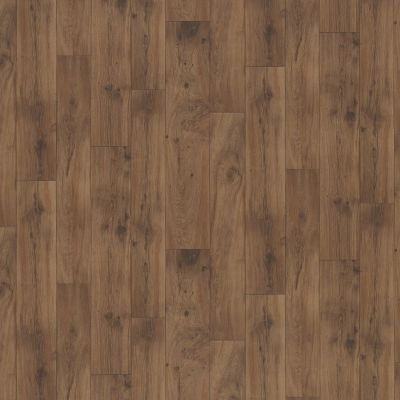 Shaw Floors Resilient Property Solutions Pro 12 Classics Copper 00802_VG054