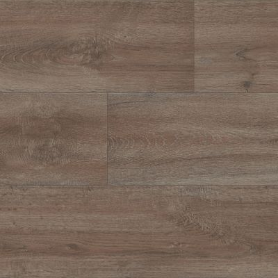 Shaw Floors Resilient Property Solutions Compact 12 High Country 07000_VG061