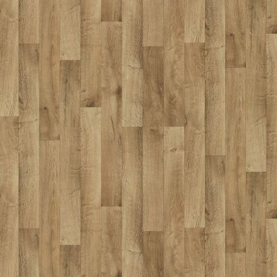 Shaw Floors Resilient Property Solutions Pro 12 Chesapeake 00102_VG062