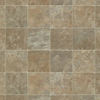 Shaw Floors Resilient Property Solutions Pro 12 Delmarva 00125_VG062