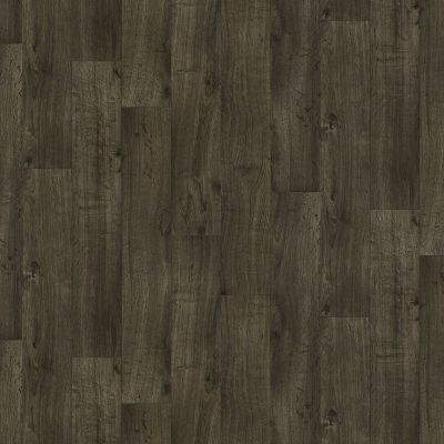 Shaw Floors Resilient Property Solutions Pro 12 Louisiana 00508_VG062