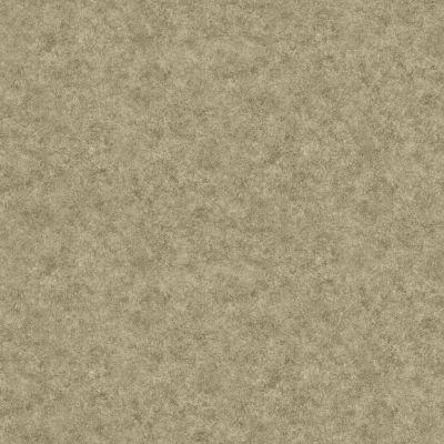 Shaw Floors Vinyl Property Solutions North Bay Healdsburg 00741_VG072
