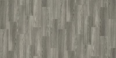 Shaw Floors Resilient Residential Pro 12 II Nightfall 00548_VG085