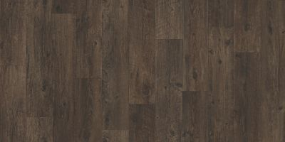 Shaw Floors Resilient Residential Pro 12 II Wilderness 00736_VG085