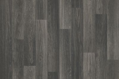 Shaw Floors Resilient Residential Pro 12 II Chaparral 00742_VG085