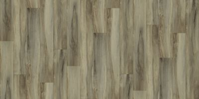 Shaw Floors Resilient Residential Urban Woodlands 65g Brentwood 00234_VG088