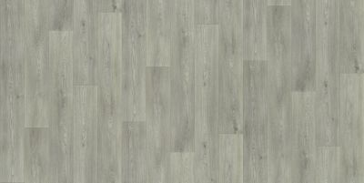 Shaw Floors Resilient Residential Urban Woodlands 65g Devon 00567_VG088