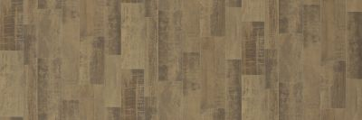 Shaw Floors Resilient Residential Sublime Vision Andromeda 07098_VG090