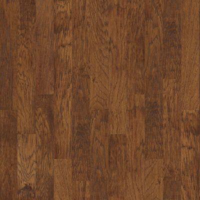 Shaw Floors Village Hardwoods Tongass Cider 00221_VH014