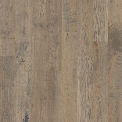 Shaw Floors Nfa Premier Gallery Hardwood Castleton Oak Armory 00508_VH035