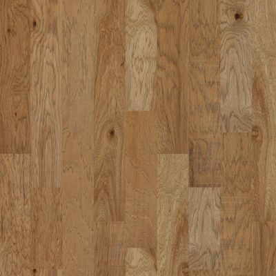 Shaw Floors Nfa Premier Gallery Hardwood Woodlands Sunkissed 01008_VH047