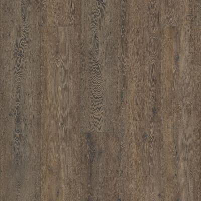 SMP COREtec – Pro Plus XL Enha Vienna Oak 02953_VH491