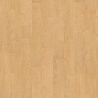 Shaw Floors Nfa HS Society 6mil Bright Lights 00225_VH500