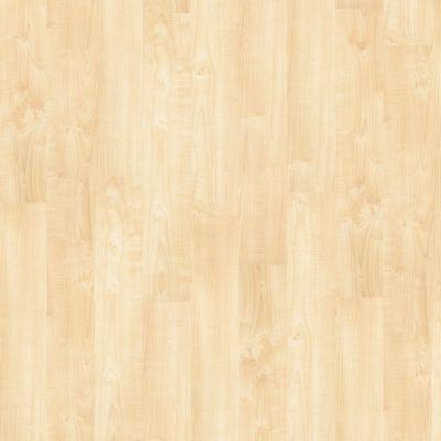 Shaw Floors Nfa HS Society 12 Mil Art District 00266_VH501