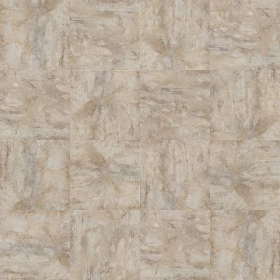Shaw Floors Nfa HS Serenity Lake Tile Oatmeal 00101_VH505