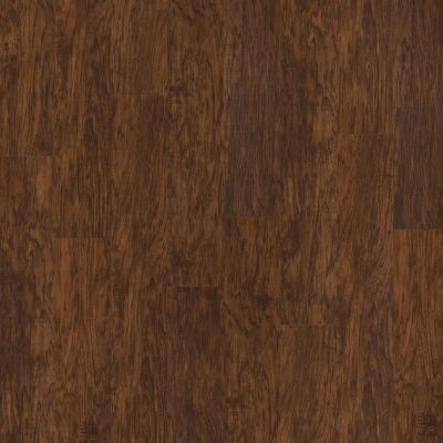 Shaw Floors Nfa HS Barton Plus Foundry 00450_VH516