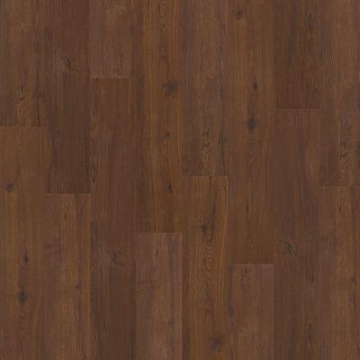 Shaw Floors Nfa HS Barton Plus Ashville 00700_VH516