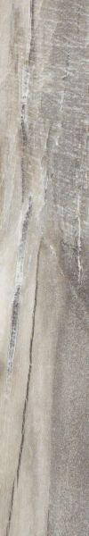 Shaw Floors Nfa Premier Gallery Vinyl Amherst Five Spice 00546_VH530