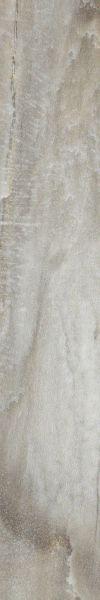 Shaw Floors Nfa Premier Gallery Vinyl Amherst Portabello 00757_VH530